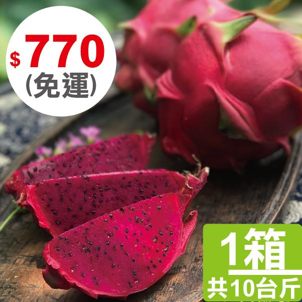 【四季農園 X 二八水商圈】季節限定 - 草生栽培長大的火龍果 10台斤、20台斤、30台斤 1
