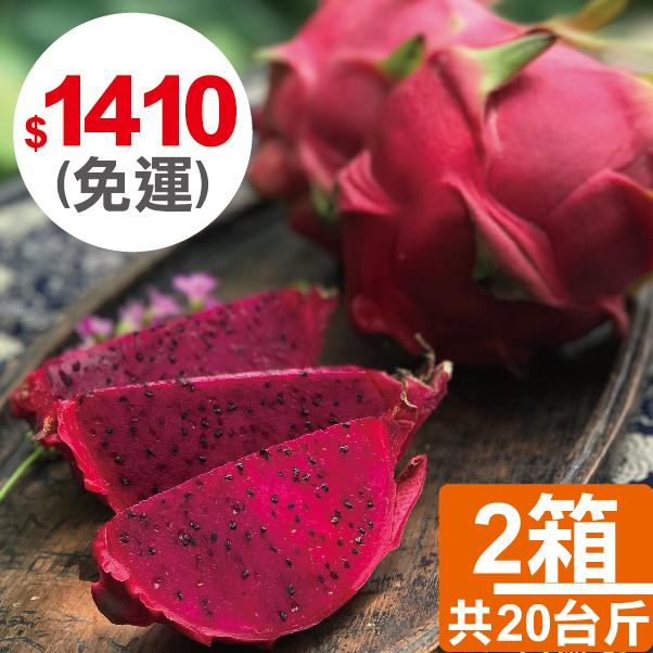 【四季農園 X 二八水商圈】季節限定 - 草生栽培長大的火龍果 10台斤、20台斤、30台斤 2