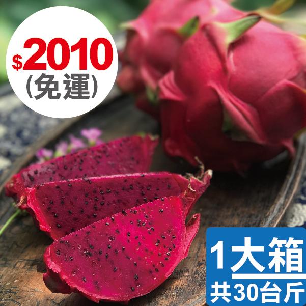 【四季農園 X 二八水商圈】季節限定 - 草生栽培長大的火龍果 10台斤、20台斤、30台斤 3
